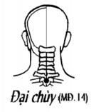 tu-hoc-chua-benh-day-bam-huyet-benh-ve-mui-15.jpg