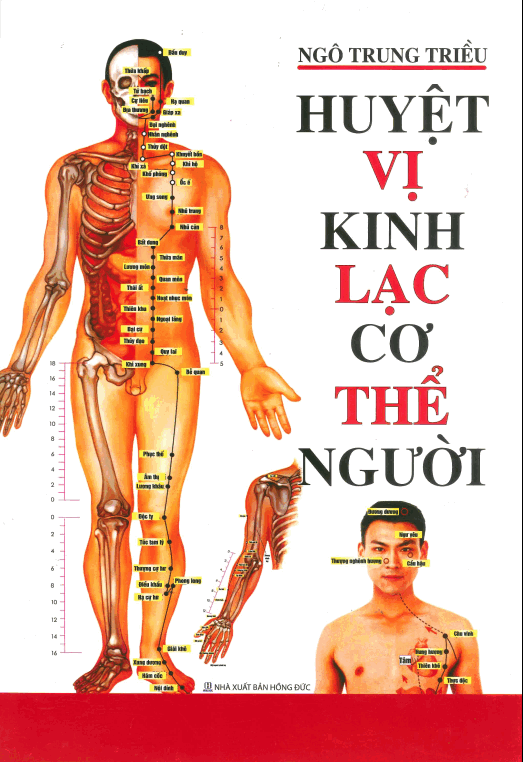 Huyet-vi-kinh-lac-co-the-nguoi.png