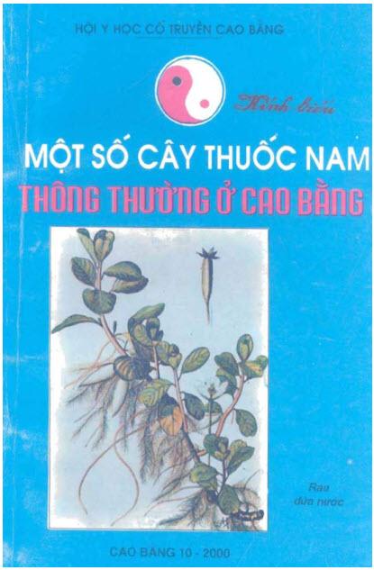 mot-so-cay-thuoc-Nam-thong-thuong-o-Cao-Bang.jpg